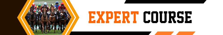 expert-course